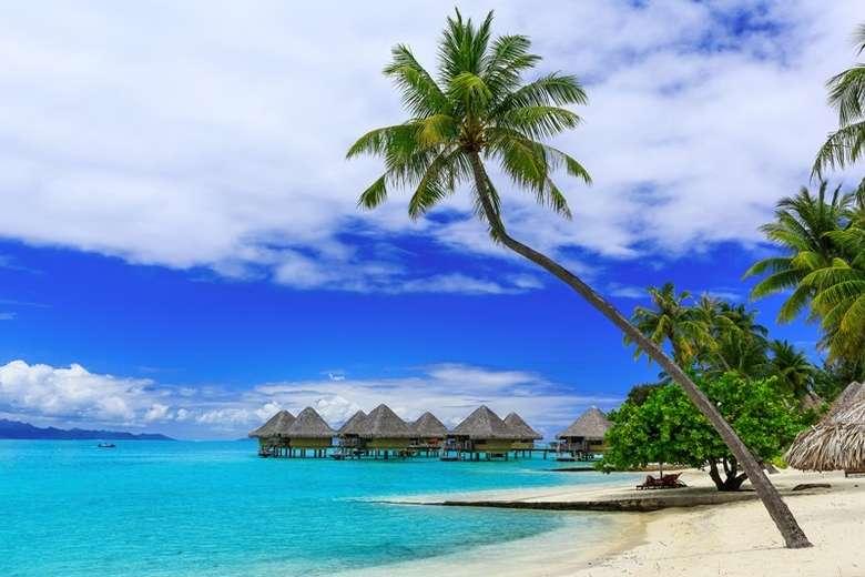 tropical ocean shoreline