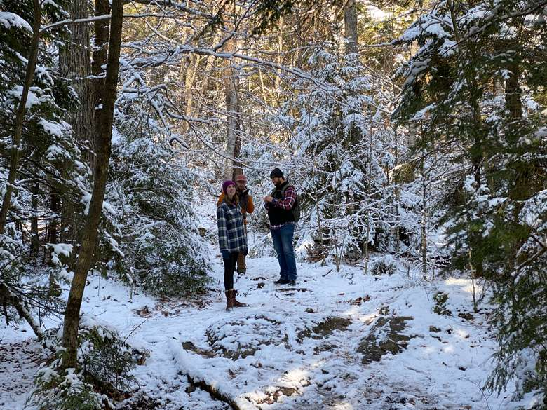 three hikers standing on snowy ground in the woods