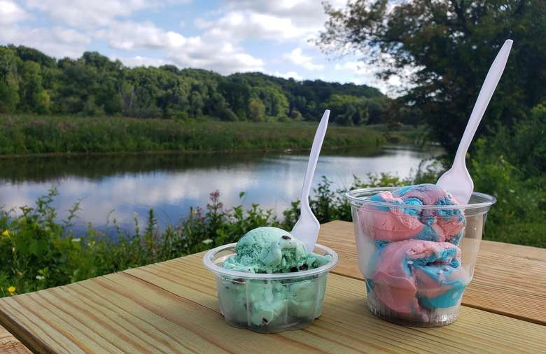 two cups of ice cream on a picnic table