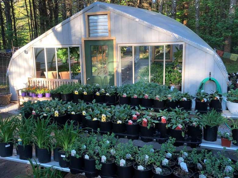 greenhouse and outdoor plants on display