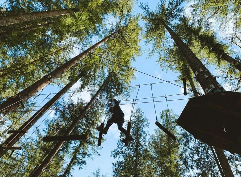 person walking across treetop obstacle