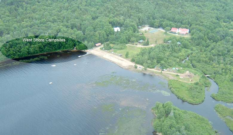 aerial view of a lake shoreline