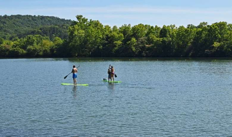 people on stand up paddleboards