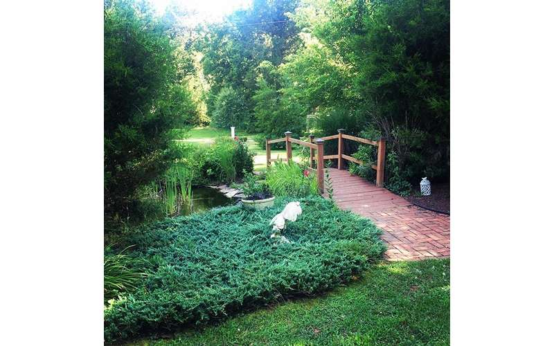 Our garden and pond area is the perfect entrance for a bride!