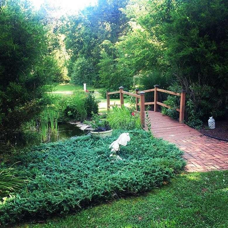 a bridge through a garden
