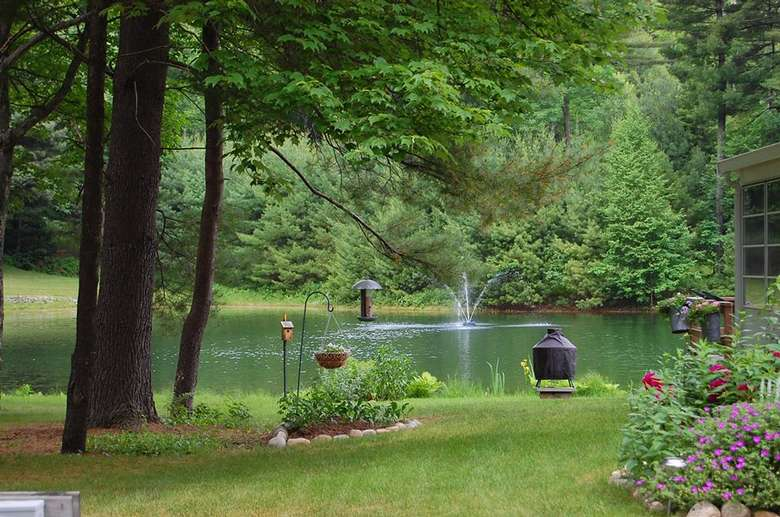 a pond with a fountain in the center, and a bird feeder is nearby on a grassy lawn