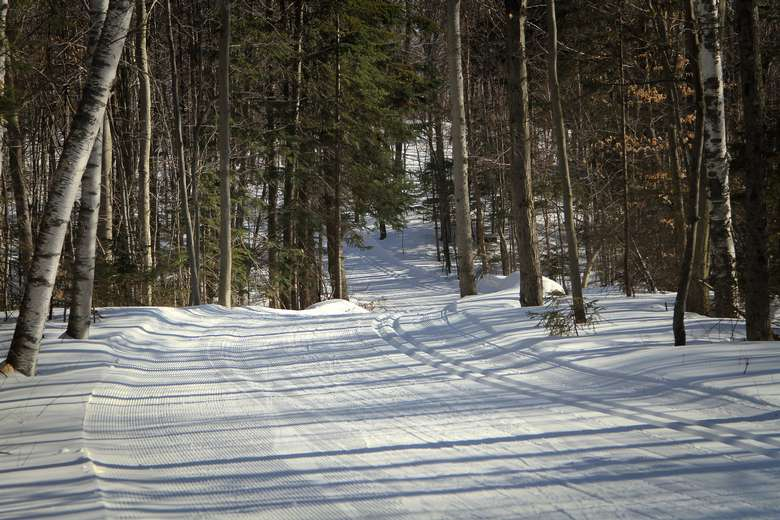groomed cross country ski trails on the property