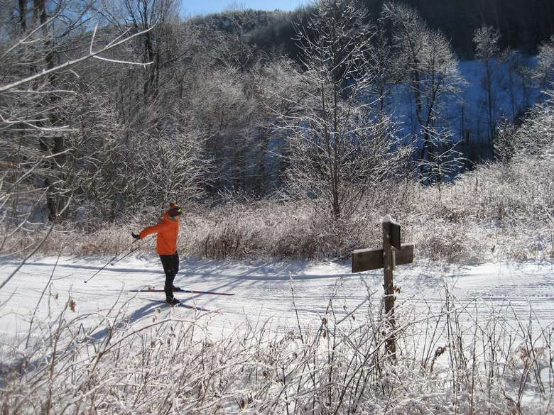 cross country skier in red jacket on groomed ski trails