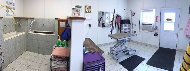 dog grooming salon with a bathing area and a grooming table