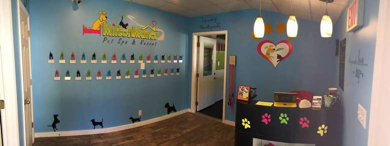 doggie daycare lobby with dozens of hooks for leashes