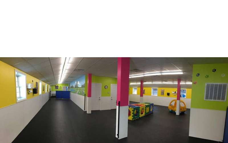 Doggie Daycare Interior with Rubber Floors