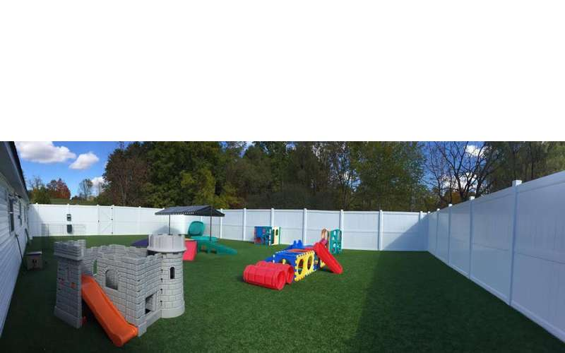 Doggie Daycare Outdoor Yard with Artificial Turf
