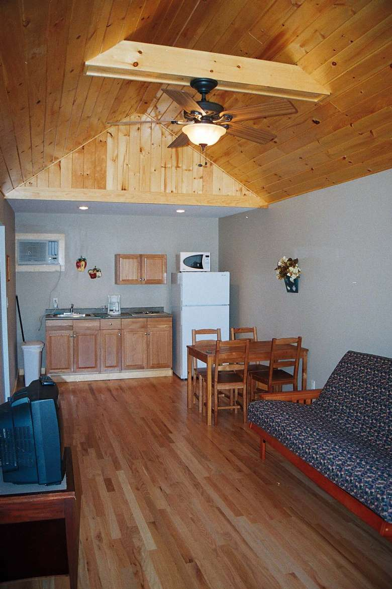 cottage living room with high ceilings, futon