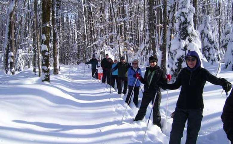 group of snowshoers in winter