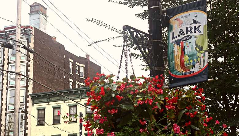 a flag on a pole that says lark street