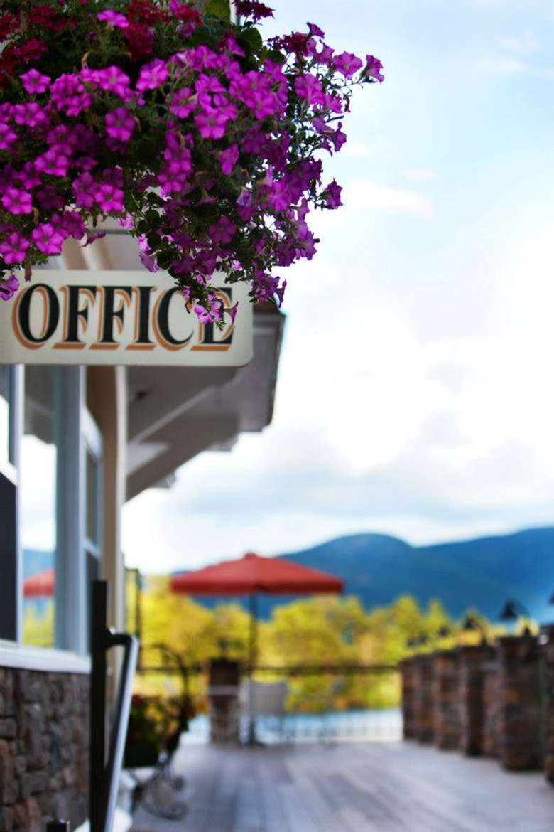 office sign with purple flowers