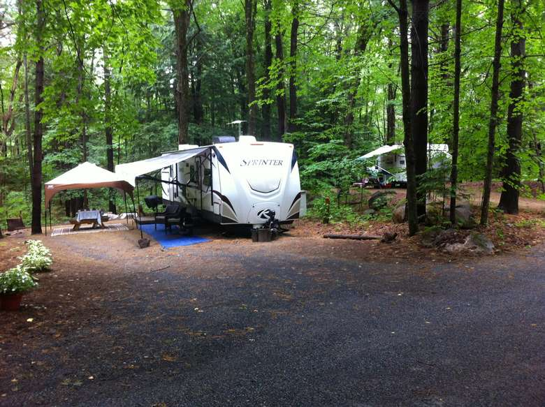 RVs set up in the woods at a camping site
