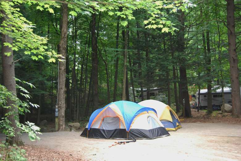 a few tents at a campsite in the woods