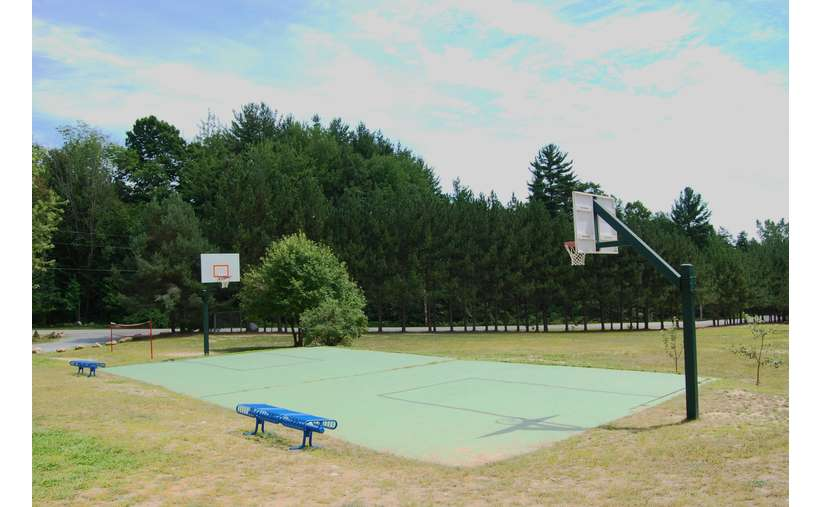 a basketball court with trees in the far background