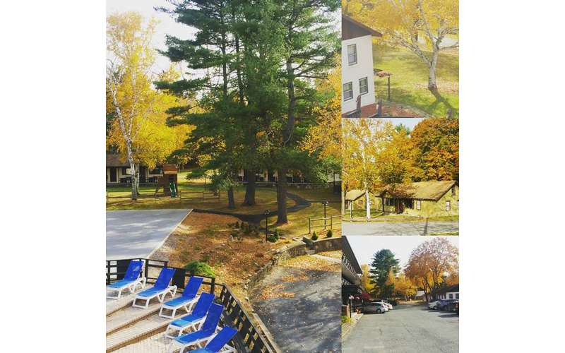 different fall foliage photos spliced together at a hotel