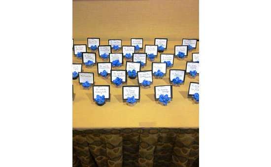 placards for guests arranged nicely on a table with a cornflower blue colored flower for each
