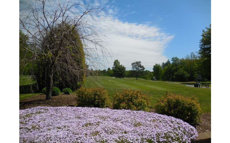 Airway Meadows Golf Club (5)