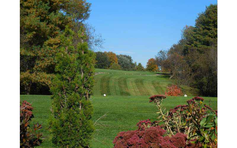 Airway Meadows Golf Club (8)