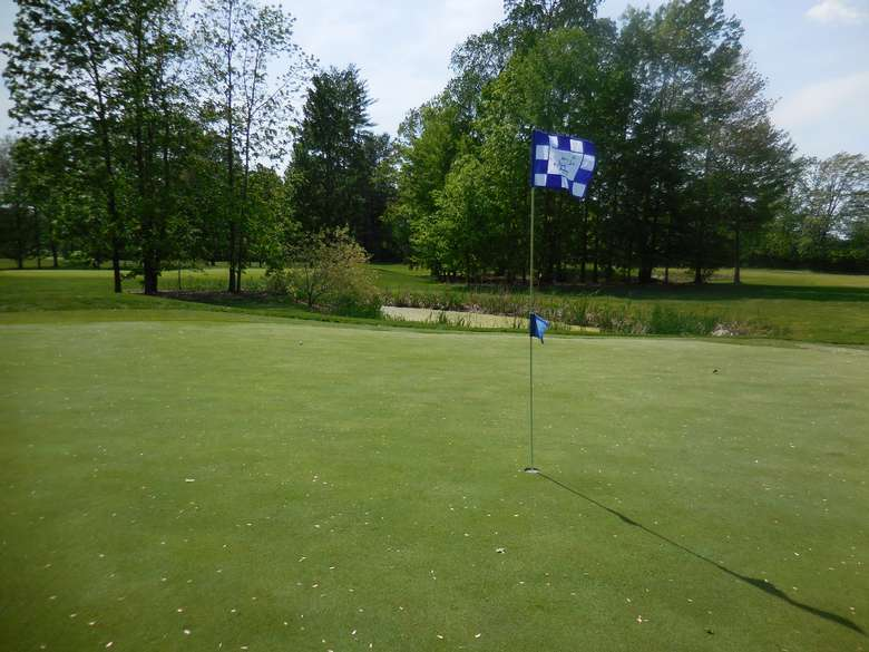 flag marking the hole on a well-manicured golf course