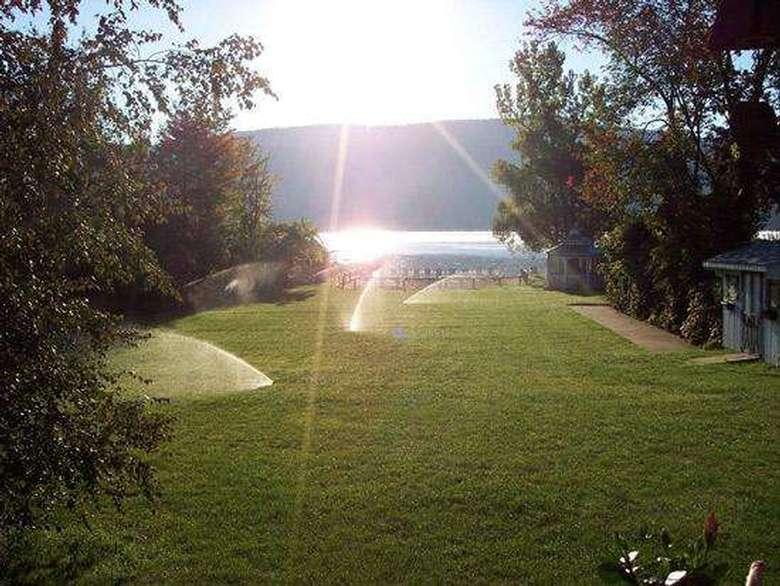 sun shining on green meadow