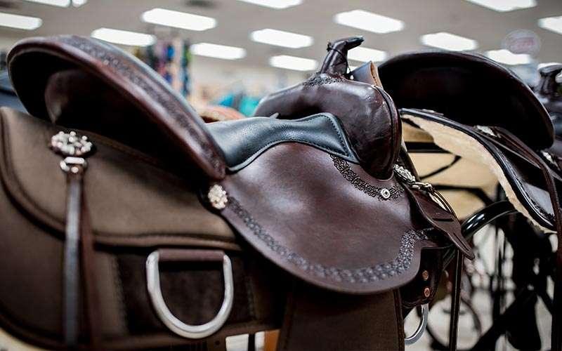 a horse saddle