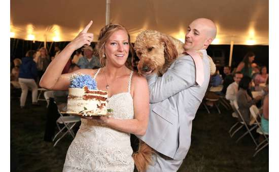 bride and groom holding up cake and a dog