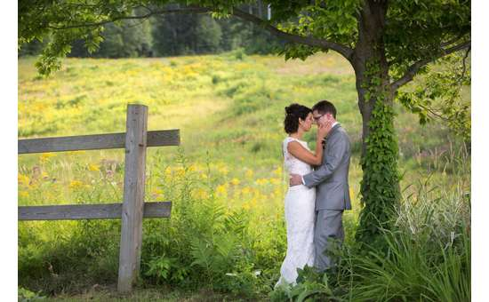 bride and groom near a tree and a fence in a grassy field