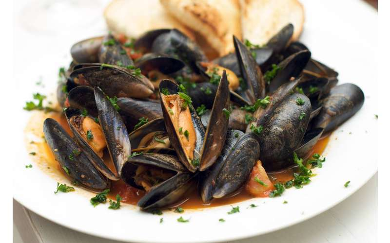 plate of mussels