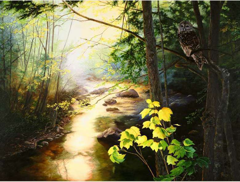 a painting of a river scene within a lush forest with an owl in a tree