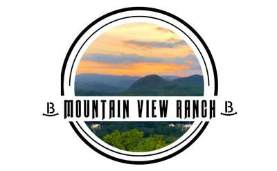 logo for mountain view ranch