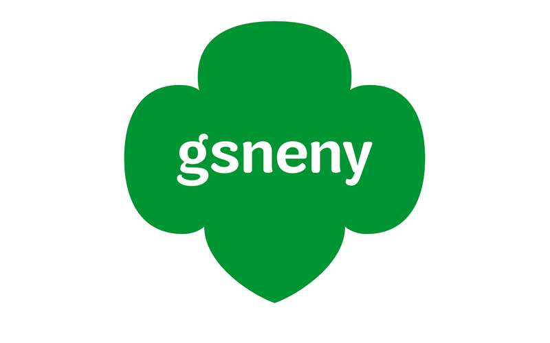 the green logo for gsneny