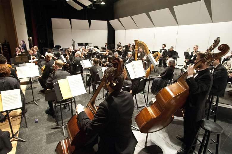 View of the orchestra from behind basses