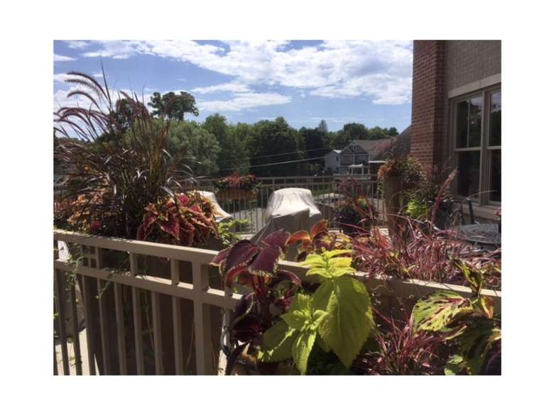 outdoor balcony with multiple plants along the balcony fencing