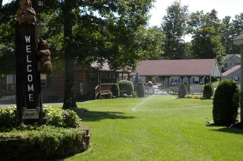 sprinklers in the lawn