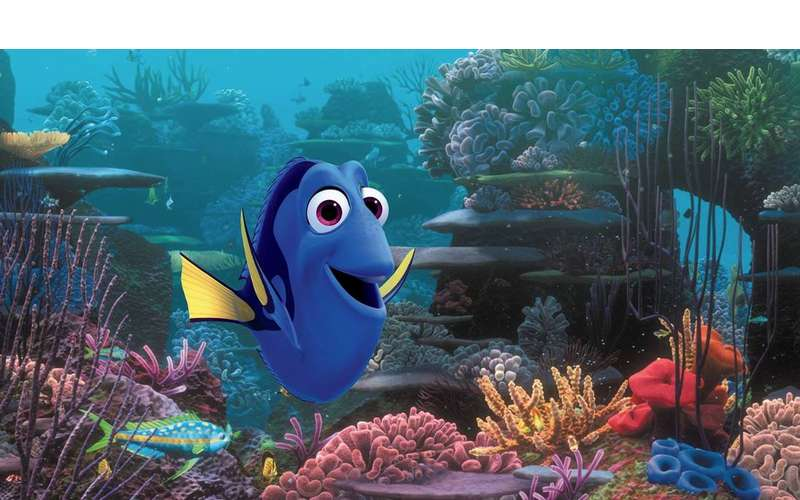 an image from Finding Dory
