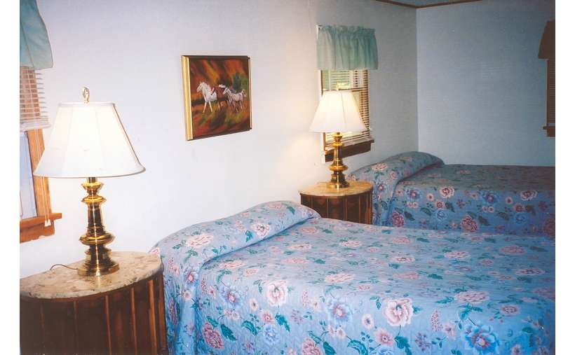 two beds in a bedroom with blue floral comforters