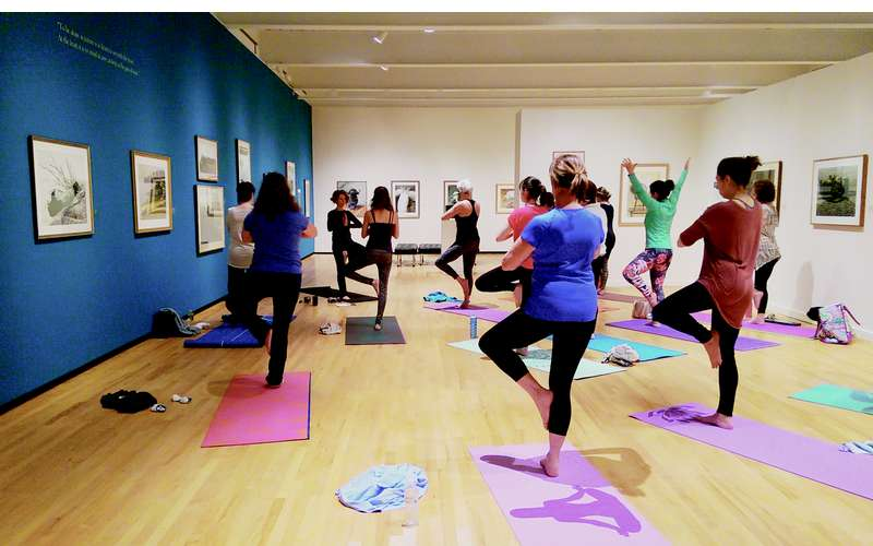 Art and Yoga - a monthly class with Summit Yoga instruction in the art gallery