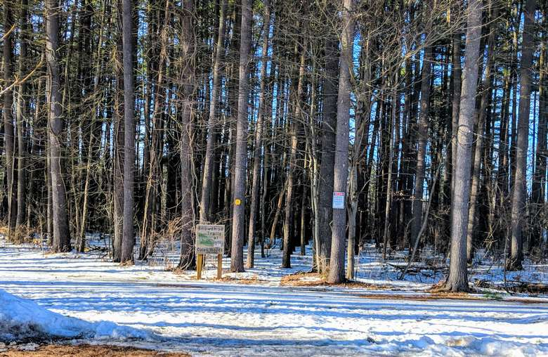 woods in winter with snowshoeing trail sign