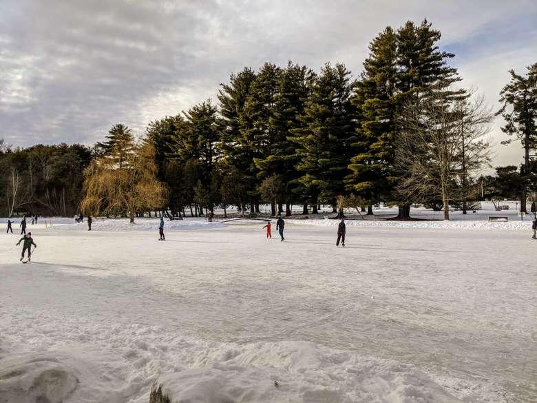 ice skaters on pond