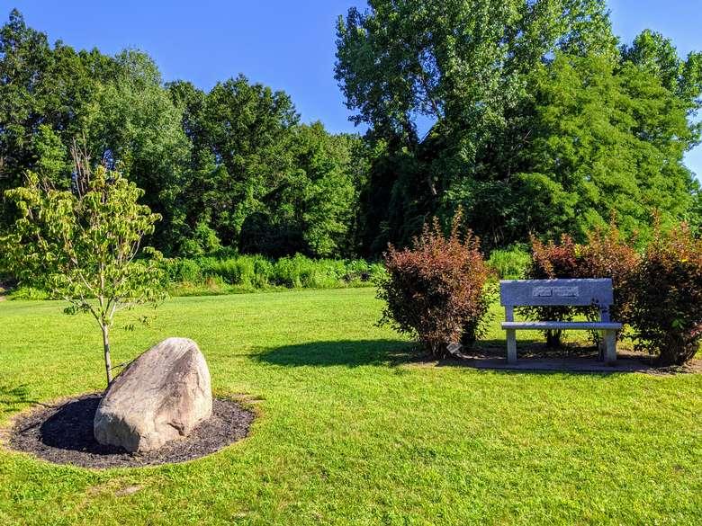 bench, rock