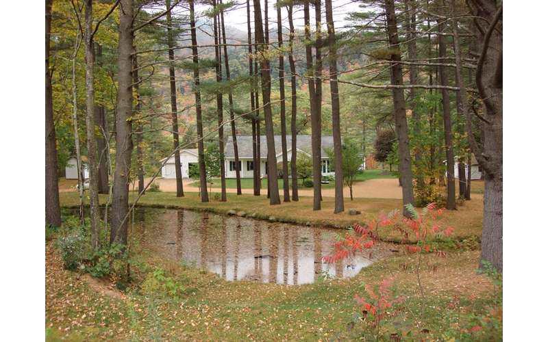 view of cabins between trees during autumn