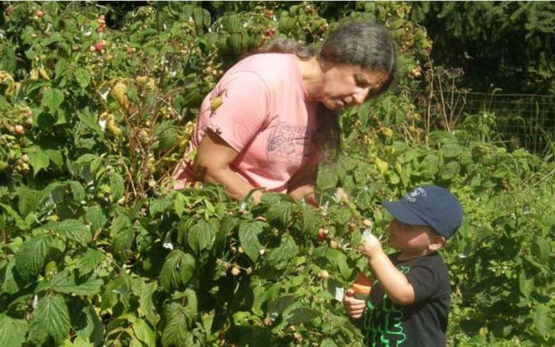 Bring your kids - they will love helping out on the farm and experiencing country life!
