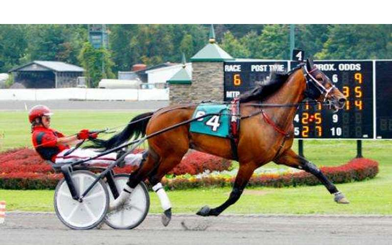 Harness Racing at Saratoga Casino and Raceway