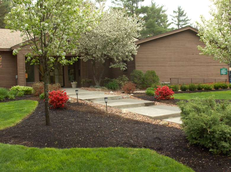 Building behind flowering trees