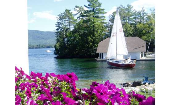 sailboat on lake george with purple flowers in the foreground